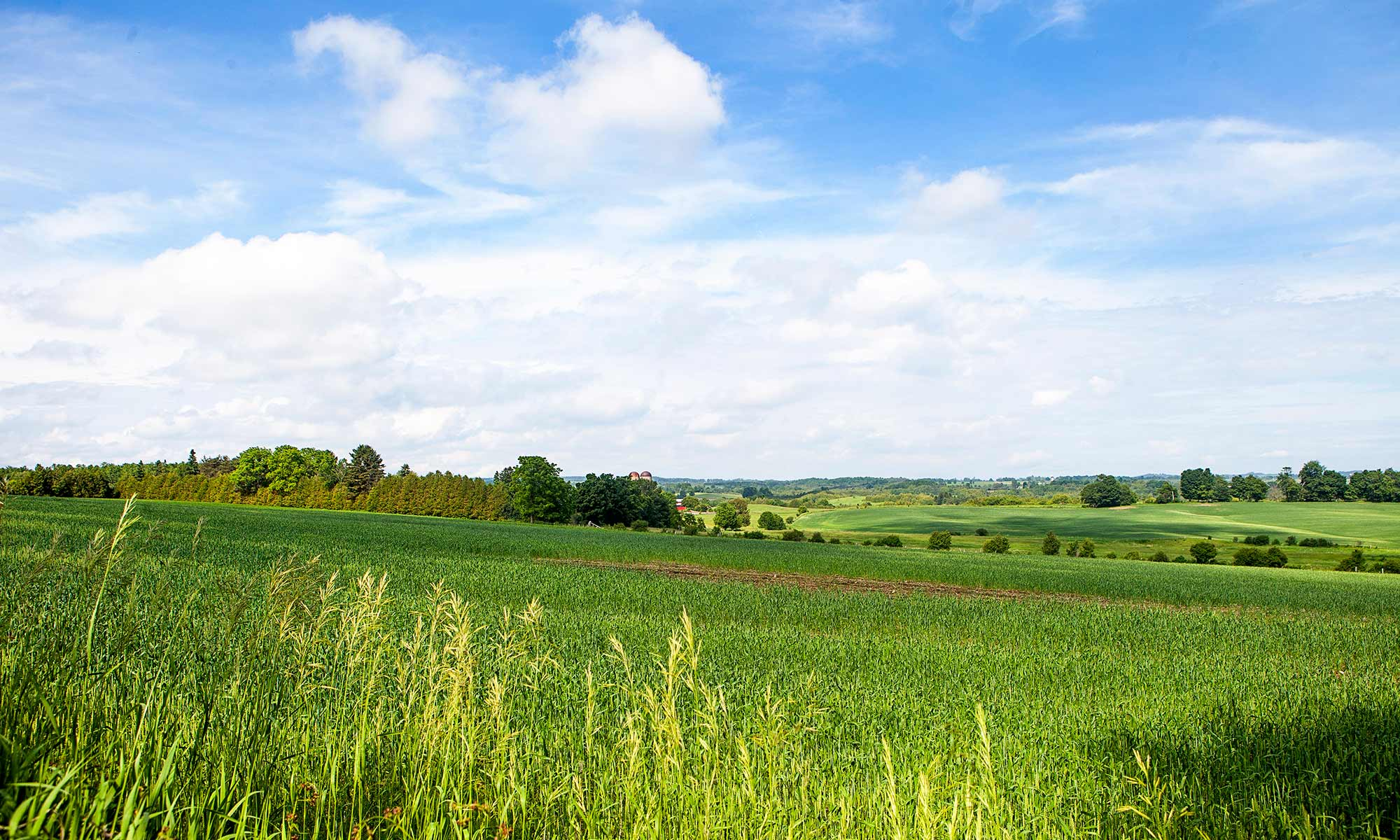 Finding the Best Land for Sale in Omaha